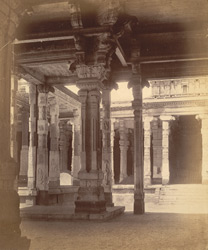 Part of the Mutarli Mandapa of the Minakshi Sundareshvara Temple, Madurai. (?)